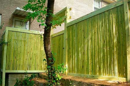 Bamboo fence ideas for small houses 34