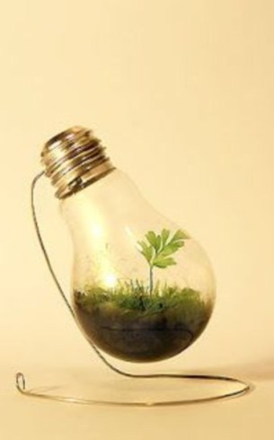Bright ideas to recycle old light blubs 14