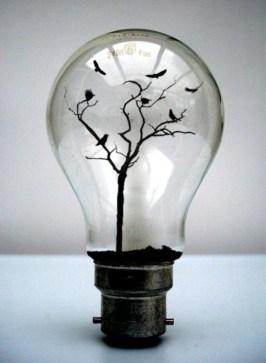 Bright ideas to recycle old light blubs 47
