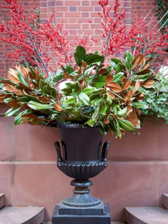 Colorful winter planters for your outdoor decorations 01