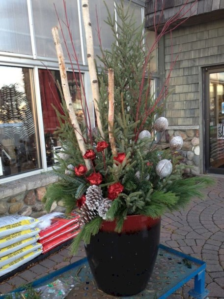 Colorful winter planters for your outdoor decorations 04