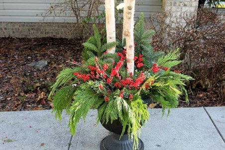 Colorful winter planters for your outdoor decorations 27