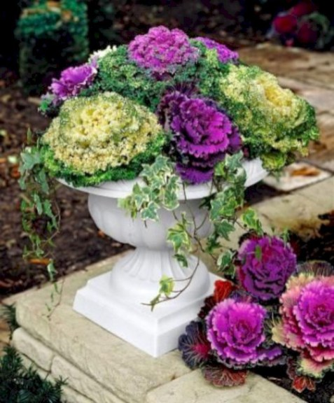 Colorful winter planters for your outdoor decorations 39