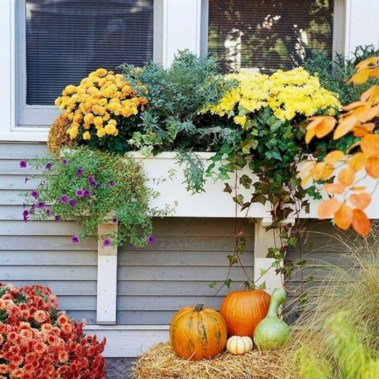 Colorful winter planters for your outdoor decorations 44