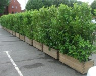 Beautiful yet functional privacy fence planter boxes ideas 13