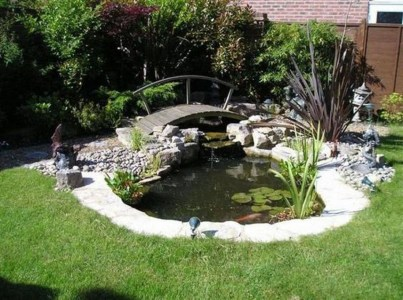 Design a fish pond garden with a waterfall concept 01
