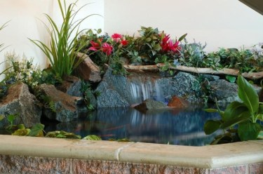 Design a fish pond garden with a waterfall concept 07