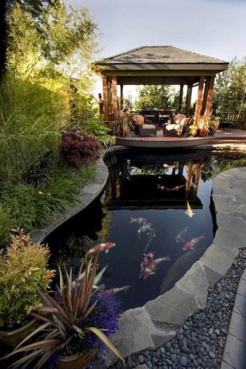 Design a fish pond garden with a waterfall concept 42