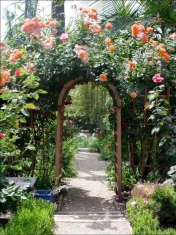 Amazing rose garden ideas in this year 13