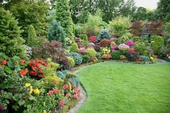 Amazing rose garden ideas in this year 23