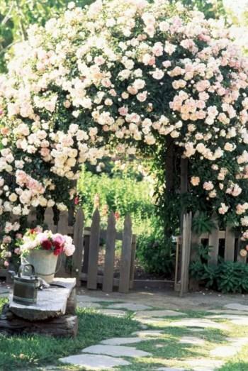 Amazing rose garden ideas in this year 32