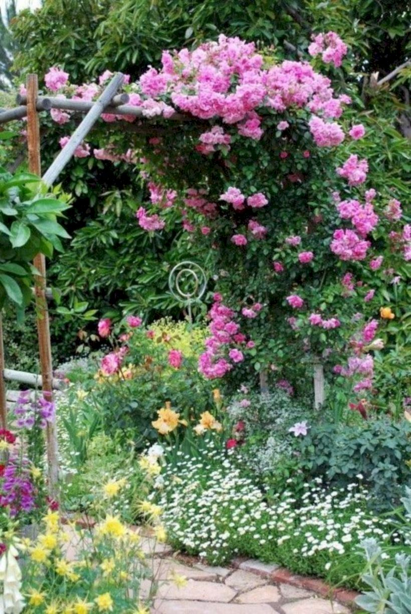 Amazing rose garden ideas in this year 46