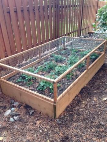 Diy garden design project in your home 12