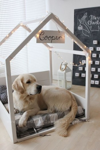Home design ideas for your pet at home 01