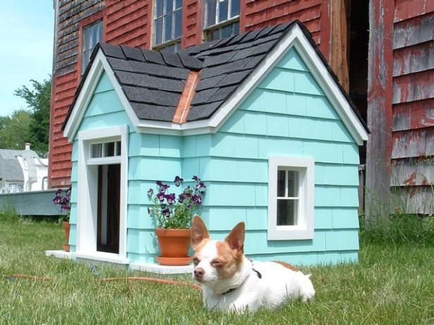 Home design ideas for your pet at home 25