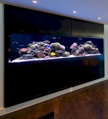 Aquarium design ideas that make your home look beauty 02