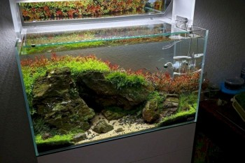 Aquarium design ideas that make your home look beauty 03
