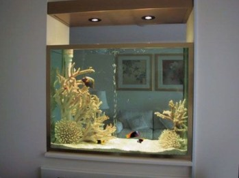 Aquarium design ideas that make your home look beauty 05