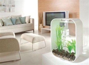 Aquarium design ideas that make your home look beauty 21