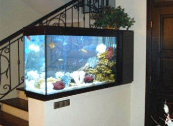 Aquarium design ideas that make your home look beauty 24