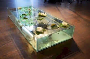 Aquarium design ideas that make your home look beauty 47