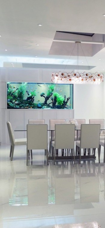 Aquarium design ideas that make your home look beauty 48