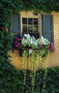 Exterior decoration ideas with flower in window 04