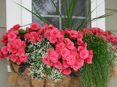 Exterior decoration ideas with flower in window 23