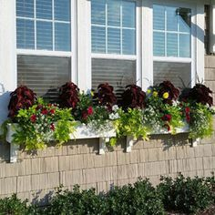 Exterior decoration ideas with flower in window 34