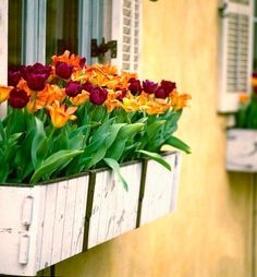Exterior decoration ideas with flower in window 42