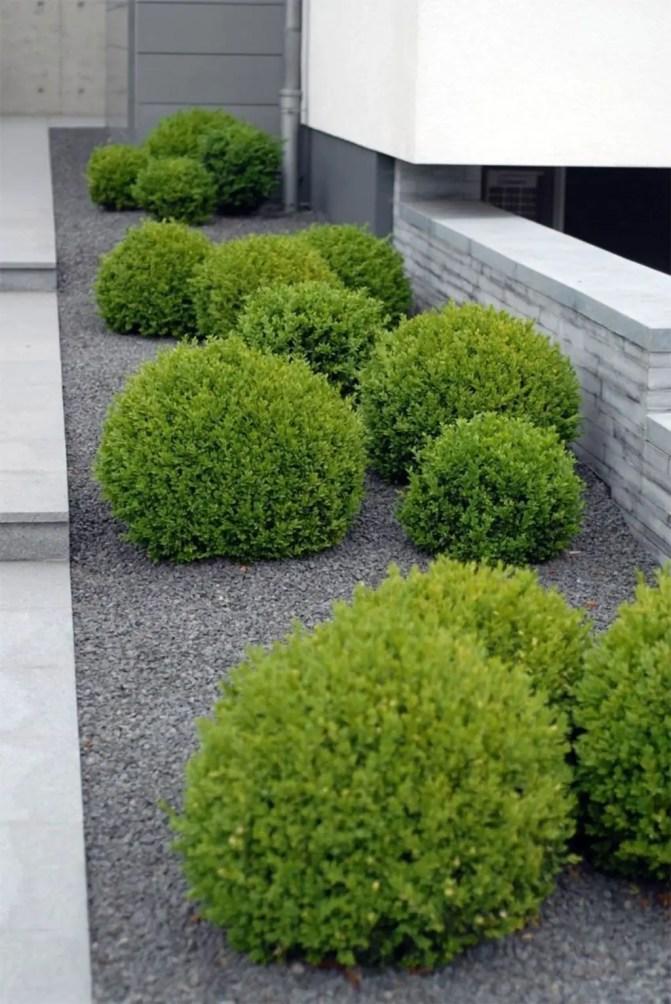 Modern&minimalist frontyard desgin ideas 39