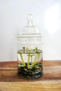 Indoor water garden ideas that fresh your room 03