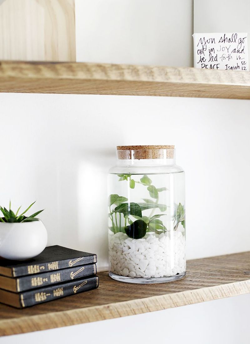 Indoor water garden ideas that fresh your room 06