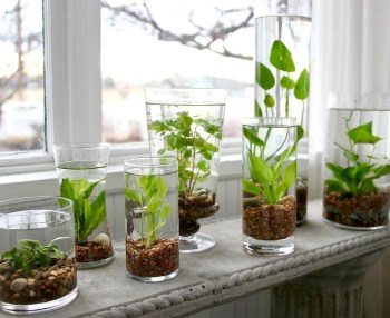 Indoor water garden ideas that fresh your room 16