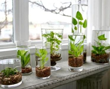 Indoor water garden ideas that fresh your room 16