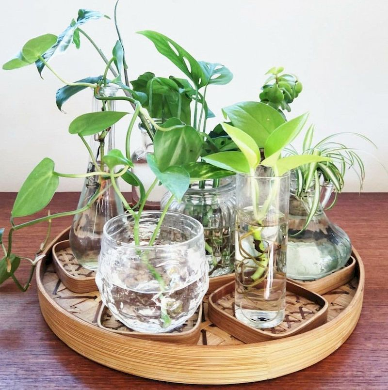 Indoor water garden ideas that fresh your room 37