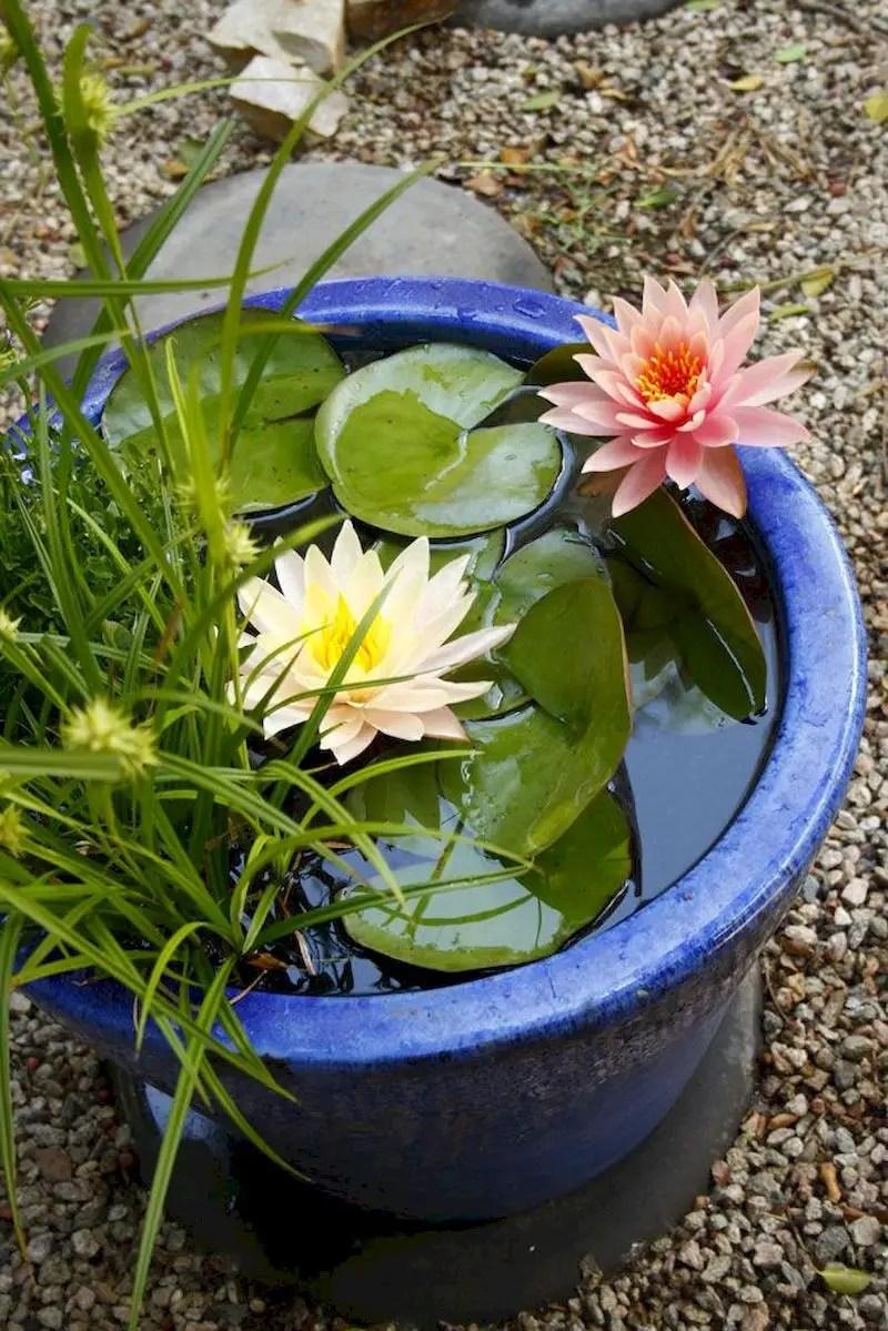 Indoor water garden ideas that fresh your room 39