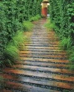On budget garden walk path ideas for an easy movement around the garden 48
