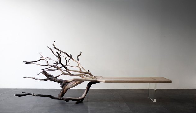 Unique natural elements furniture with with actual tree branches seemingly growing from its bench seat as though the seat where the tree's trunk
