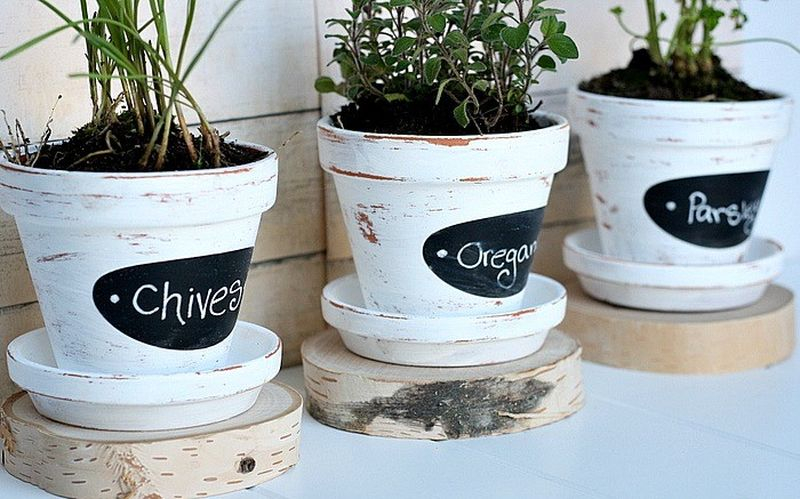 Beautiful chalkboard herb pots with white painted to perfect your garden