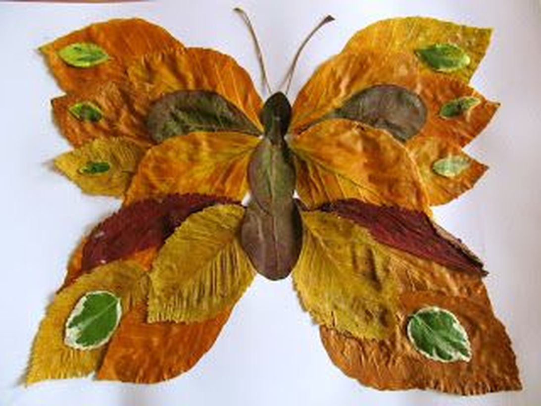 Best autumn leaves craft butterfly shape