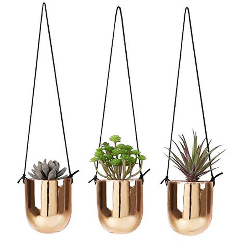 An amazing hanging succulent ideas with gold pots to look luxury