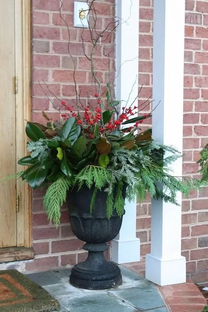 An amazing plants decoration