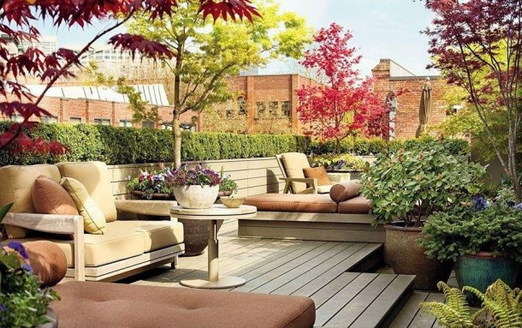 An awesome rooftop garden design with large plants, shrubs and small trees, groundcovers, annuals must be there to complete your rooftop design