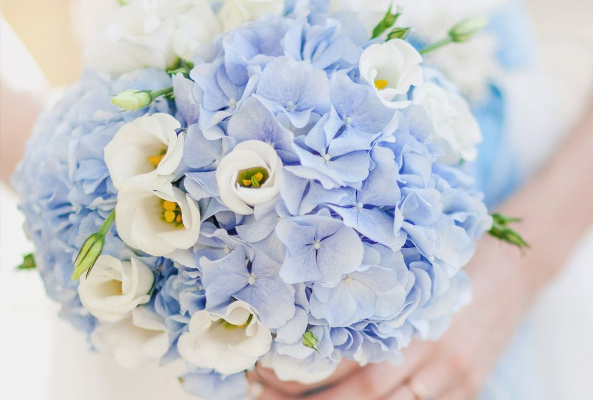 Flower bouquet for fancy wedding with hydrangea's voluminous to create beauty