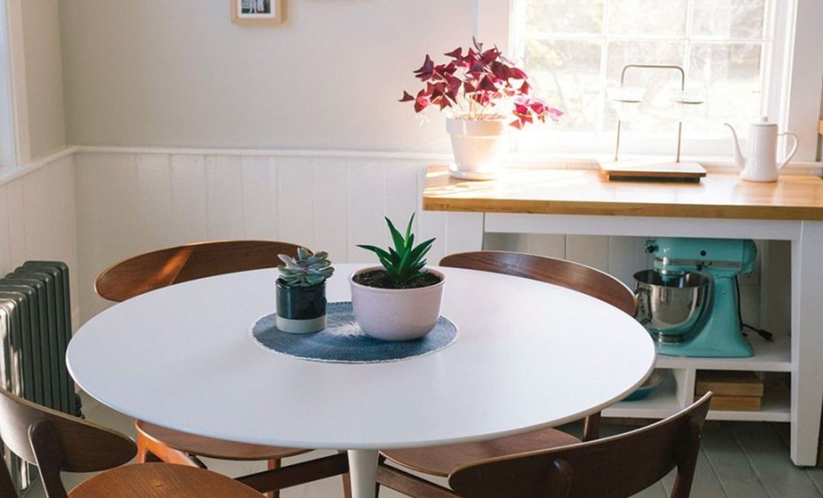 Gorgeous succulent with square shape for beautiful decoration above round table