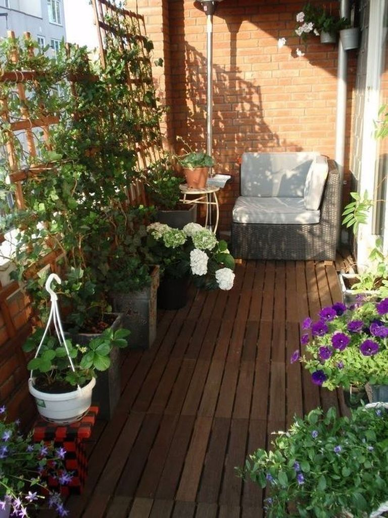 Plants decoration to complete your small balcony