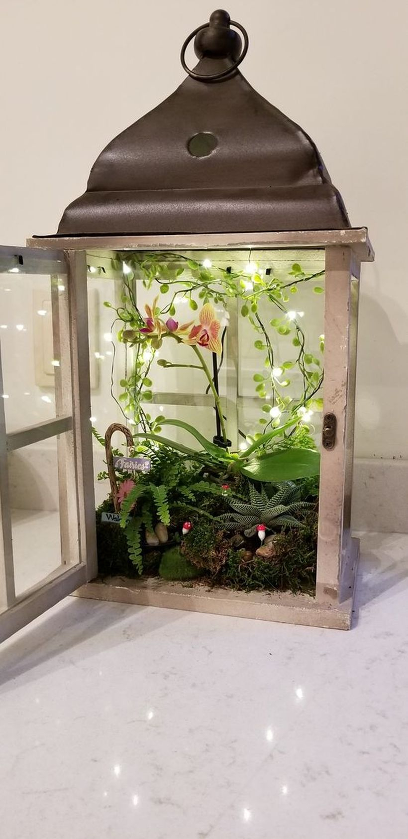 Simple lantern terrarium with small greenery and decorative lighting to create beautify the room