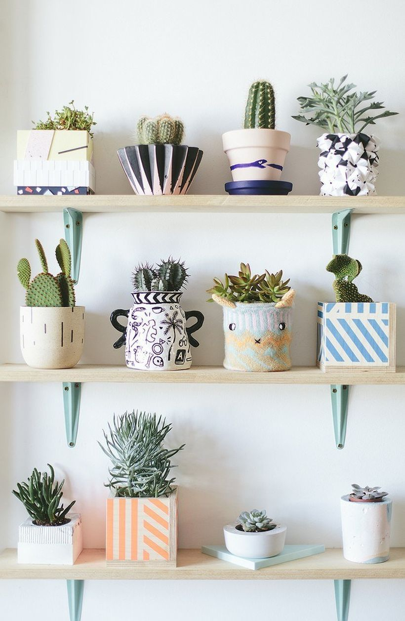 Simple wooden rack placement succulent ideas with small pot on the wall