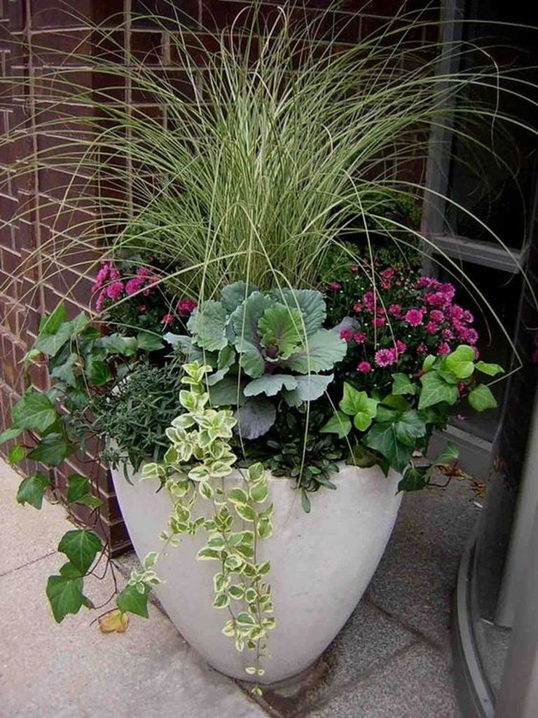 White pot combined with vines and plants